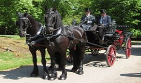 Carriages for Other Work