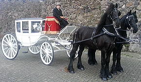 Carriages for Weddings